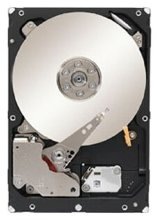 Seagate Constellation 1 TB ST1000NM0033