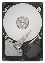 Seagate Barracuda 250 GB ST3250318AS