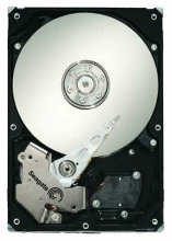 Seagate Barracuda 1 TB ST31000340NS