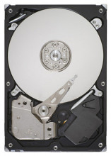 Seagate Barracuda 500 GB ST500DM005