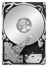 Seagate Constellation 1 TB ST91000640NS