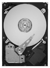 Seagate Barracuda 1 TB ST1000DL002